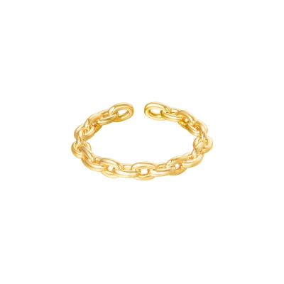 Ring Connect goud